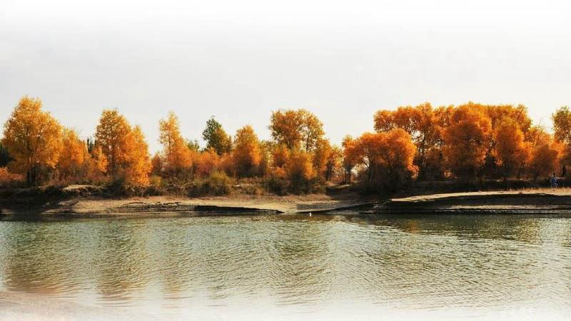 胡昌支   叶尔羌河位于塔克拉玛干沙漠的最南端,发源于昆仑山,全长1281公里,流经喀什地区6县和克孜勒苏柯尔克孜自治州的阿克陶县,是塔里木河的源流之一,年均产水量65亿立方米。在这个年蒸发量达2000毫米,降水量却只有50至80毫米的水资源奇缺的地方,无论是生活还是生产,叶尔羌河都不可替代,称得上是两岸人民的母亲河。   然而,叶尔羌河又是一条让当地人爱恨交织的河流。它的乳汁养育了逐河而居的人民,它的汛期又带来了很多麻烦。   忧患叶尔羌河是一条游荡性河流,窄处两公里,宽处三四公里,下游河水漫滩,最