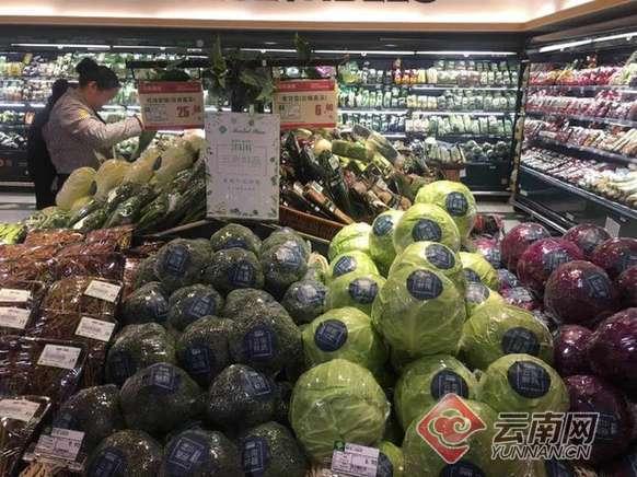 云南通海蔬菜直供北京超市