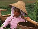 改革开放初年的中国人