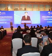 中国证监会副主席、党委委员