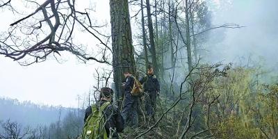 木里森林火灾起火原因为雷击火