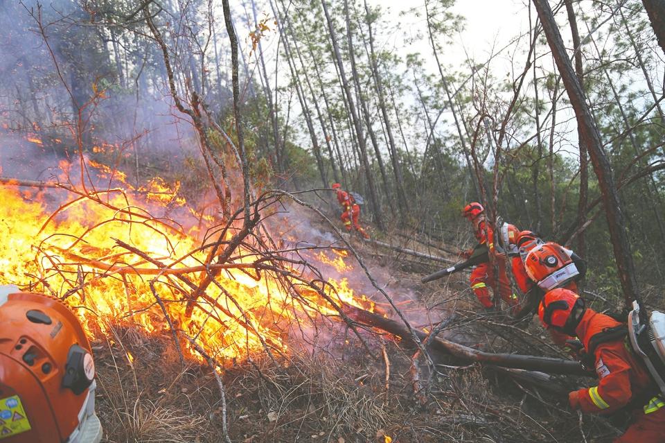 凉山冕宁发生森林火灾 250余消防员连夜扑救 东线火情已平定