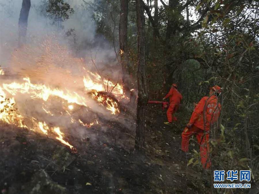 凉山州木里、冕宁两县9日投入1665人扑救森林火灾越西县山火已扑灭