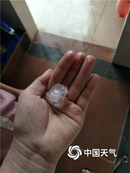 广东雷州出现今年首次冰雹 香瓜受灾严重