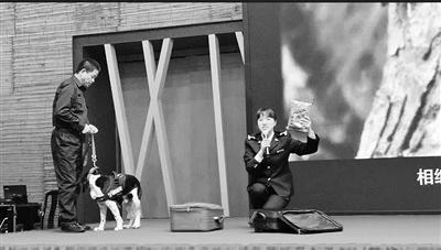 海关检疫犬显身手