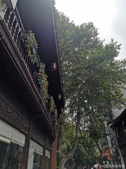 雨渐起!浙江强降雨来袭 中南部局地有暴雨