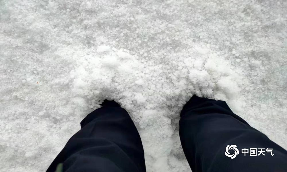 内蒙古辉腾锡勒草原遭遇冰雹袭击 最厚处没过脚