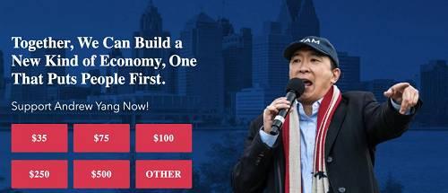 截图自杨安泽竞选网站。