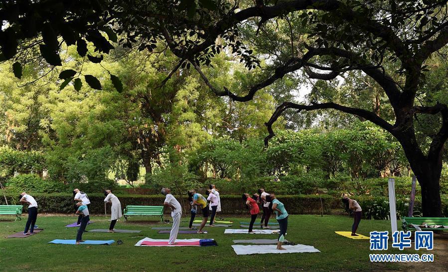 这是在印度新德里,人们在公园练习瑜伽(2019年6月21日摄)。 新华社记者 张迺杰 摄