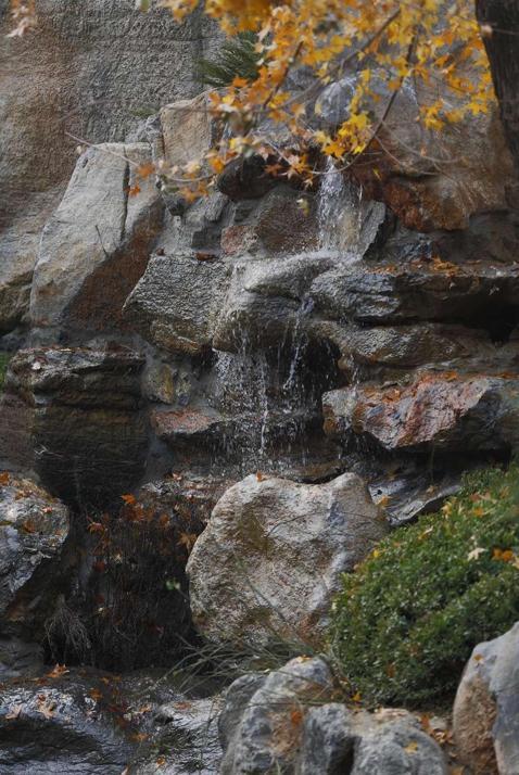 �庐造园| 一块太湖石的旅程