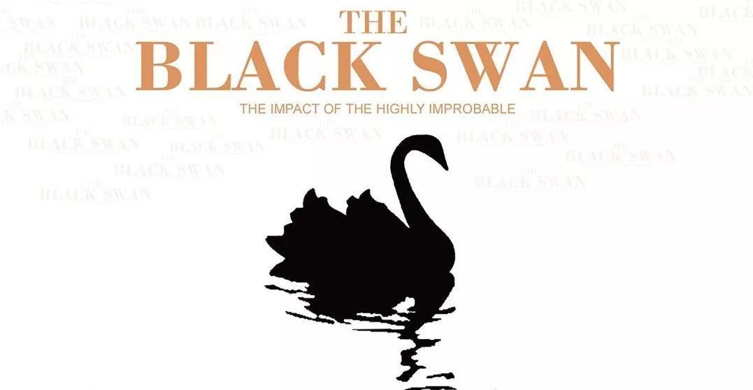 《黑天鹅》:这个特别的长长长假,你最应该看的书
