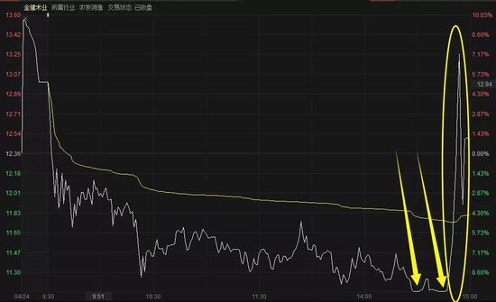 金健米业今日分时图