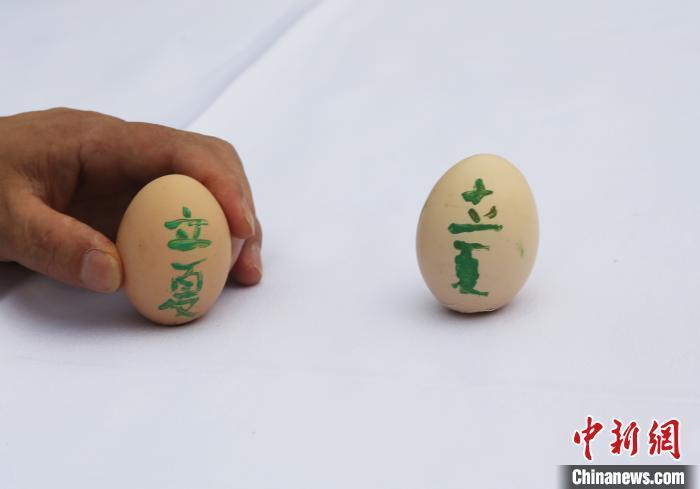 """重庆:立夏""""斗蛋""""""""绘蛋""""传承传统习俗"""