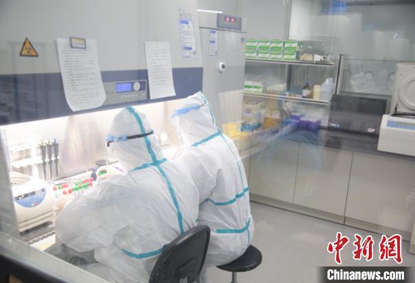 新冠疫苗研发进展:腺病毒载体疫苗已完成一、二期接种