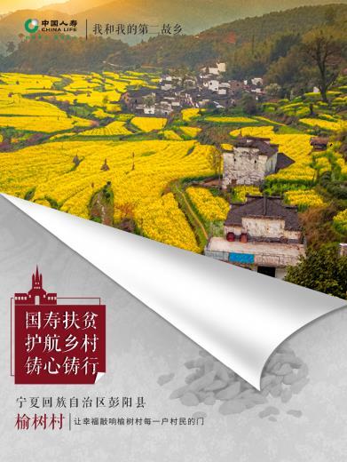 国寿铸心系列十六:让幸福敲响榆树村每一户村民的门――记中国人寿宁夏分公司扶贫第一书记房永平