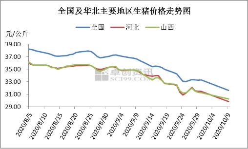 大猪企9月加速放量猪价承压 10月猪价最多超跌反弹