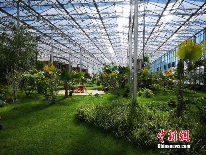 http://www.edaojz.cn/youxijingji/809110.html