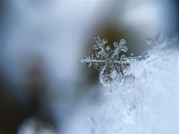 usdt回收(www.caibao.it):多地气温将创入冬以来新低:羽绒服等抗寒物质热销 甚至断货
