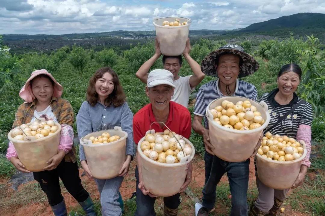 天天果农互联网精准扶贫,全方位多渠道爱心助农