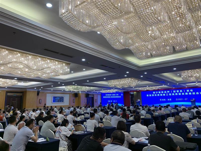 湘沙猪新品种(配套系)发布暨湘潭市优质湘猪工程高质量发展推进会议召开