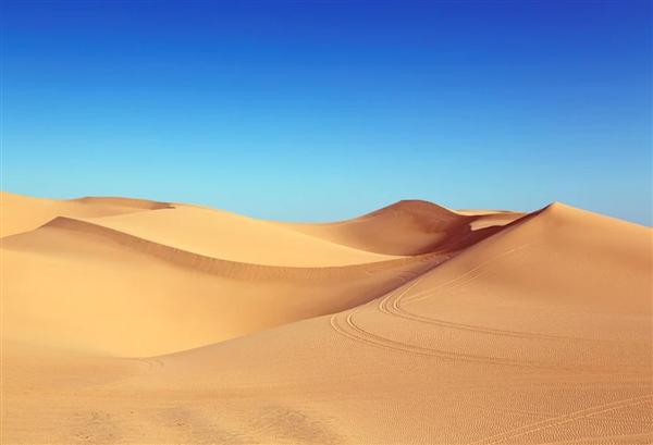 16岁学生沙漠探险身亡 知情人回应:沙漠中无信号 运至公路才联系到救护车
